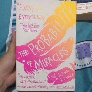 Novel the probability of miracles #mauvivo