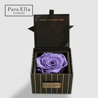 平售 Para Ella 厄瓜多爾入口 ❀小方盒永生玫瑰♡ 紫玫瑰