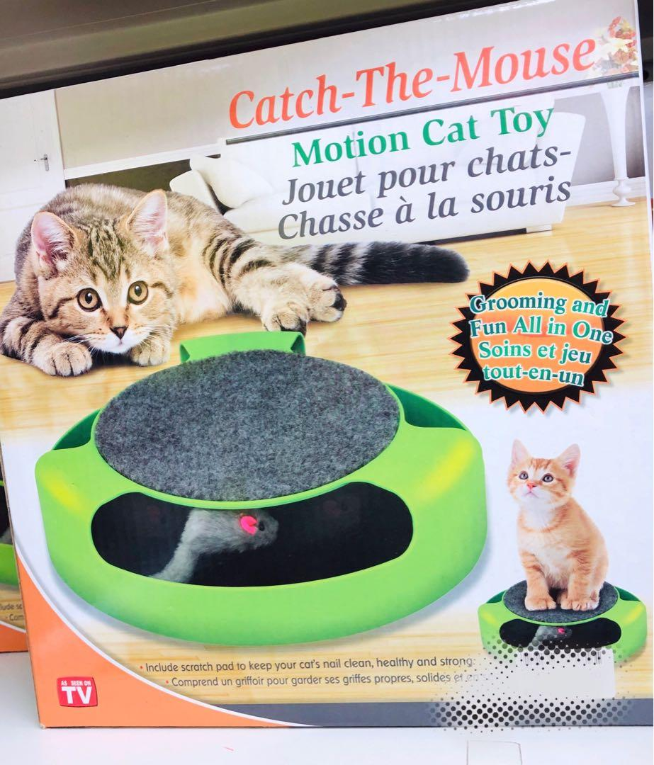 全新 貓貓玩具 有意pm