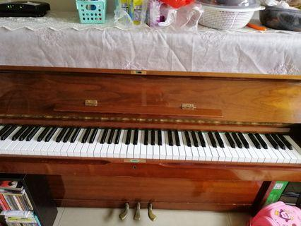 Piano鋼琴