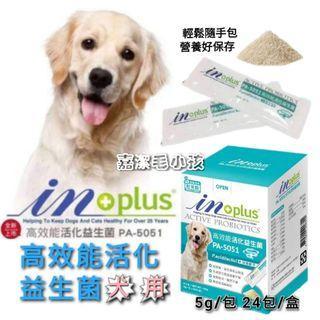 🚚 IN+plus贏 PA-5051🐶犬用高效能活化益生菌 益生菌 修護腸道 維持消化機能  5g/120g 隨手包/盒裝