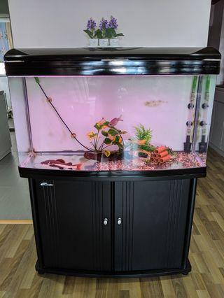 1m ( 39 inches )Fish Tank for sale with external pump