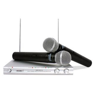 Professional Wireless Dual Handheld Microphone/Cordless Microphone