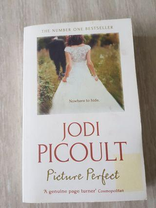 🚚 Picture Perfect by Jodi Picoult