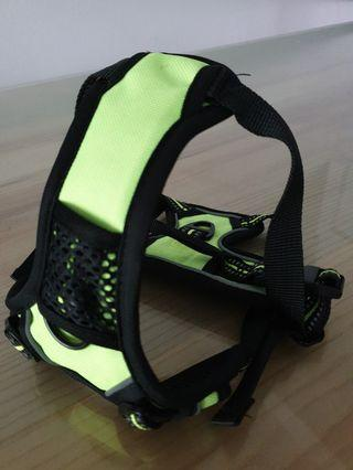 🚚 BN - Dog Harness (Small)