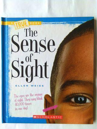 The Sense Of Sight