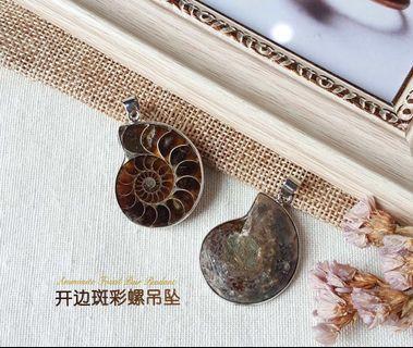 🚚 斑彩螺吊坠 Ammonite Pendant
