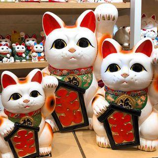 日本經典常滑燒大入招財貓