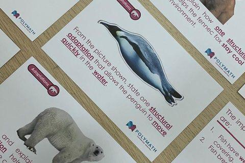 PSLE SCIENCE FLASH CARDS