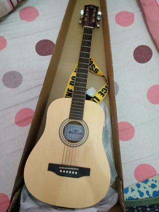 Gitar acoustic electric Anderson