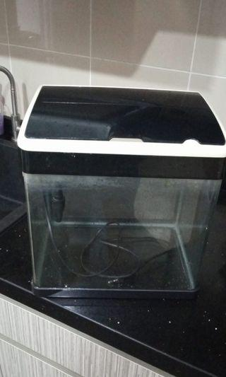 All in 1 Acrylic table top fish tank with cover pump and filter