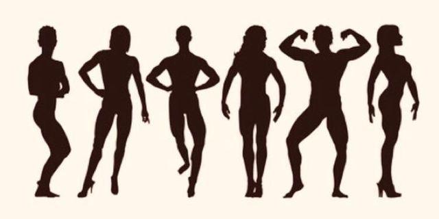 女私人健身伸展教練 (AASFP)