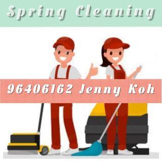 Spring Cleaning / House Cleaning