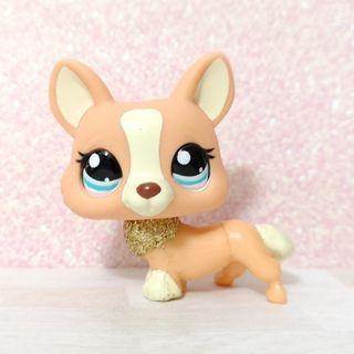 Littlest Pet Shop lps RARE sparkle corgi