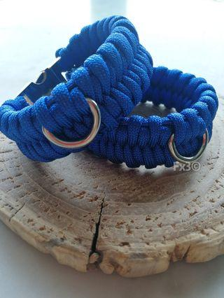 Fishbelly Paracord Collar with Silver Buckle
