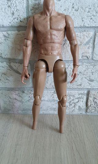 1/6 scale muscular body figure