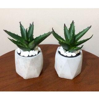 Rare! ARTIFICIAL CACTUS In Cement Pot (2 Units In Stock!)