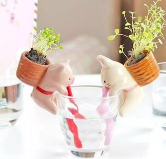 ✨✨READY STOCK✨✨Animal Water Absorption Potted Plant