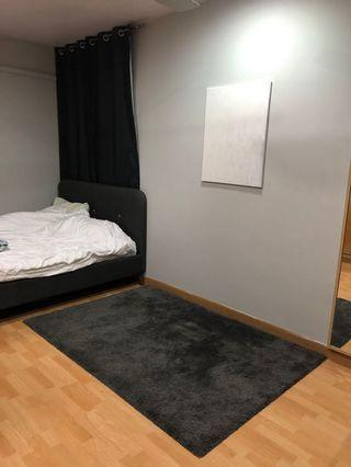 IKEA ADUM Grey Carpet