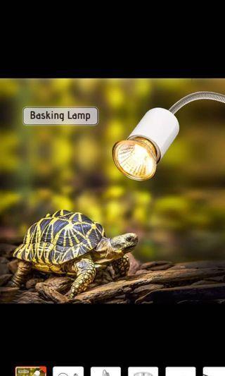 Basking lamp (including Bulb) +  terrapin food