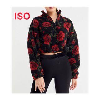 UO rose teddy pullover