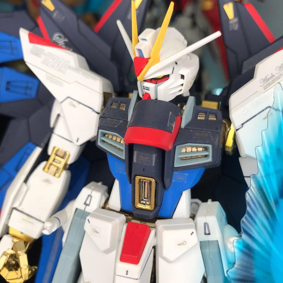 日本直送 已消光 MG Freedom 1/100 自由高達模型 代工 成品
