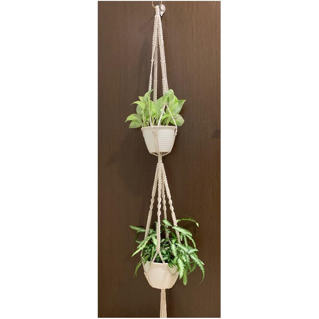 Handmade Macrame Plant Holder (006)