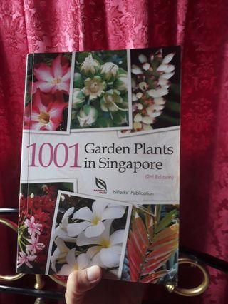 1001 garden plant in singapore