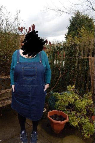 Plus Size Pinafore