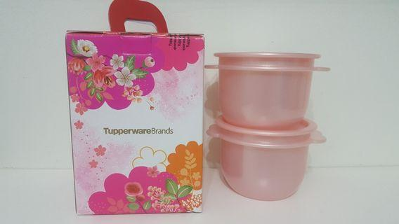 🚚 Limited Edition Tupperware Container 2pcs