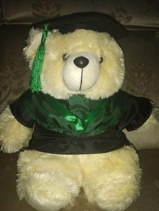 Boneka Teddy Bear (graduated)