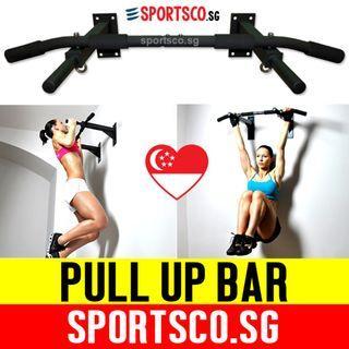 Wall Mounted Chin Up Bar