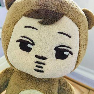WTS GOMINIEE DOLL (OFFICIAL)