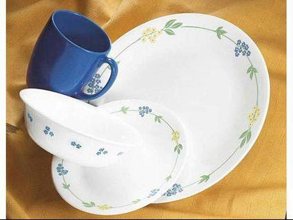 Corelle Secret Garden 16pcs