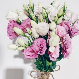5x eustoma bridal posy