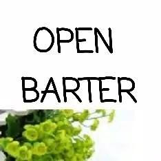 Open Barter , Barteryuk