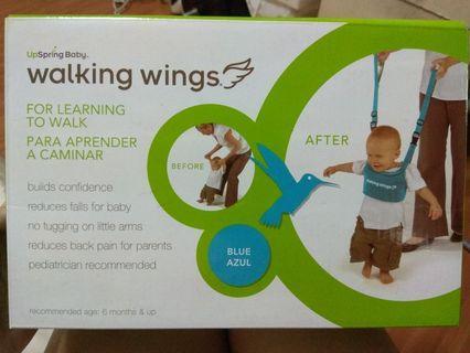 🚚 Walking Wings