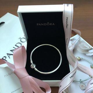 Pandora Bangle Bracelet Exclusive Limited Edition