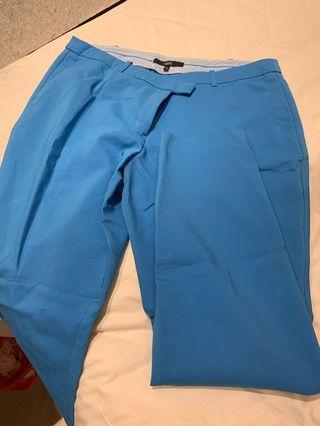 Sky blue Structured Pants