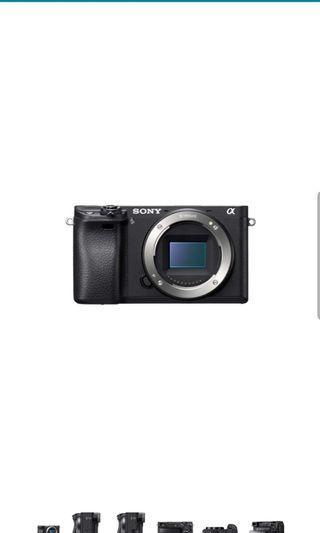 Sony A6300 mirrorless camera with Sony E 35/1.8 prime lens
