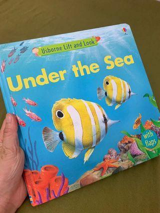 幼兒書籍 圖書 書 books lift and look Under the sea