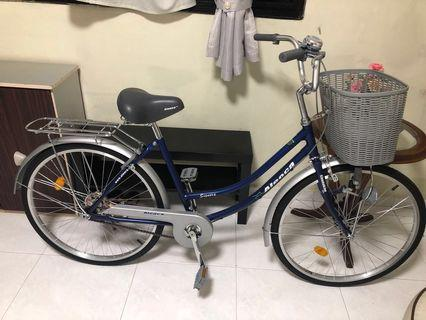 Aleoca Lady Bike
