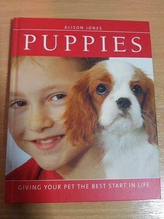 🚚 Puppies - Alison Jones