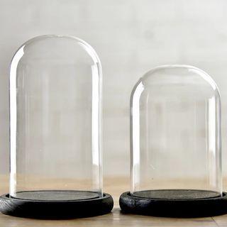Bell jar / display jar