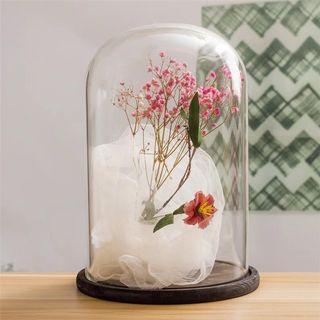 Preserved flower display bell jar #junetogo