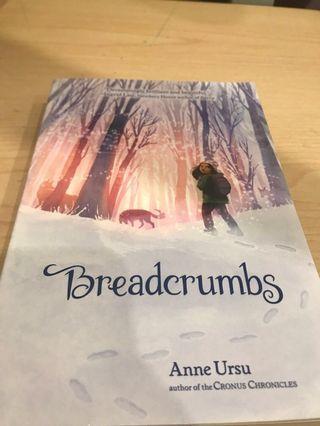 🚚 Breadcrumbs- Anna Ursu