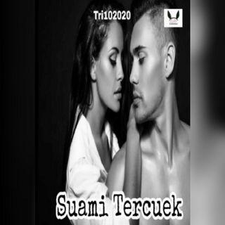Ebook Suami Tercuek