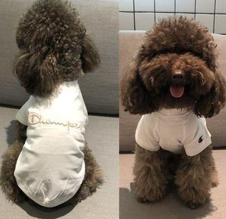 BN Champion Pets Boys Streetwear Fashion Label Tee