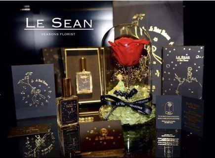 Le Sean - The little prince Preserved Rose