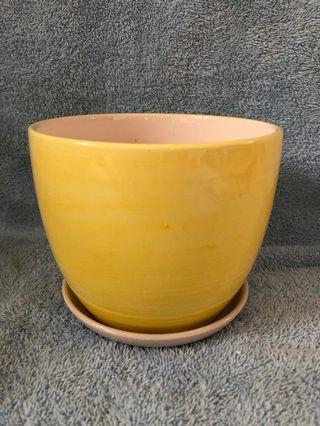 全新 黃色瓷花盆 直徑13.5cm 連底盆
